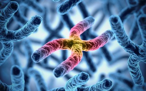 Distinct Genetic Profiles in Single Family Illustrate Challenges to GD Diagnosis, Study Says