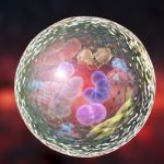 nanovesicles, targeted therapy