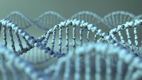 Preclinical Data Has AVR-RD-02 Gene Therapy on Track for First Trial in Humans