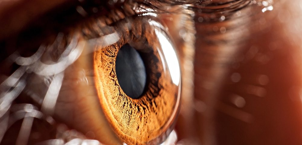 Impaired Eye Movements Correlate with Clinical Status of GD Type 3, Study Finds