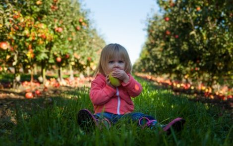 Scoring Swallowing Problems Helps Stage Neurological Decline in Type 2 GD Infants